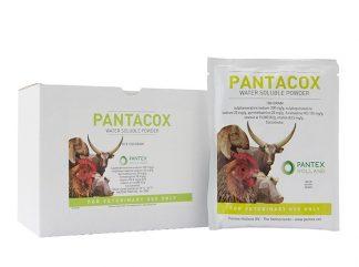 Pantacox-0