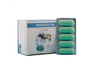 Pantazole 2500-0